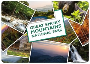 Smoky Mountains Placemats